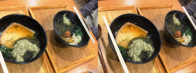 JR新大阪駅 本町製麺所 天(TEN)新なにわ大食堂店 2019.3.16(交差法)