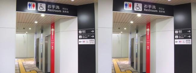 JR野江駅 2019.3.16⑤(交差法)