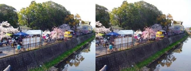 さざなみ公園・放生川(交差法)