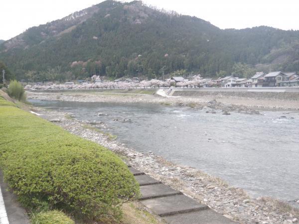 相戸堰堤上流19年