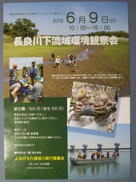 2019環境観察会