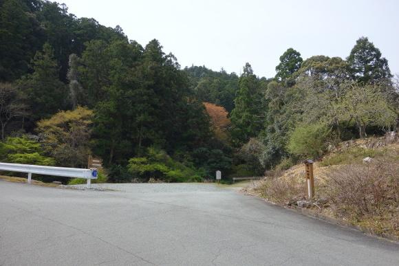竜ヶ峠02-19