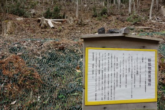 伊勢古道・竜ヶ峠07-03