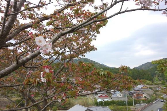 伊勢古道・竜ヶ峠09-12