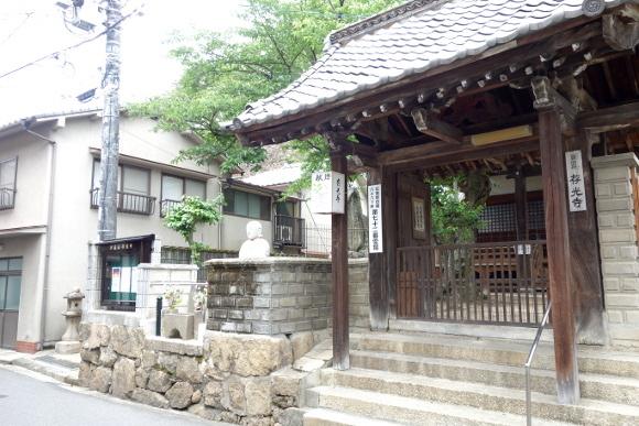 厳島合戦史跡・要害山19