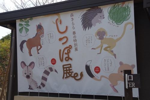 九十九島動植物園 森きらら しっぽ展