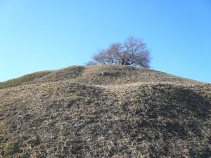 190311_丸墓山3