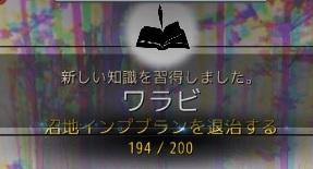 23732.jpg