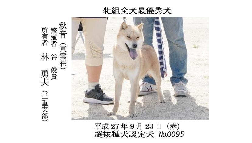20190519-01福井道犬最優秀犬牝秋音