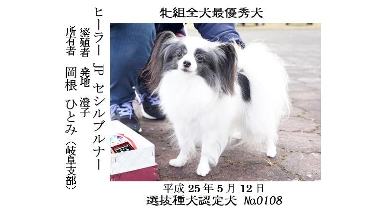 20190519-08福井全犬種最優秀犬牝