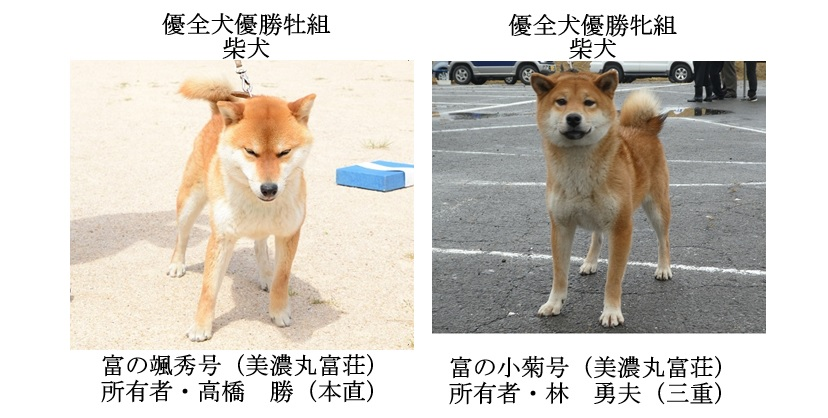 20190519-10福井全犬種優全