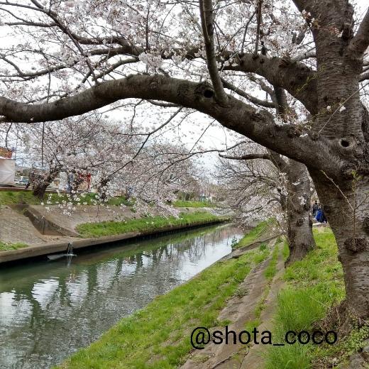 19-04-02-15-29-39-088_deco.jpg
