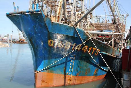西沙 ベトナム イカ 中国 略奪 海賊