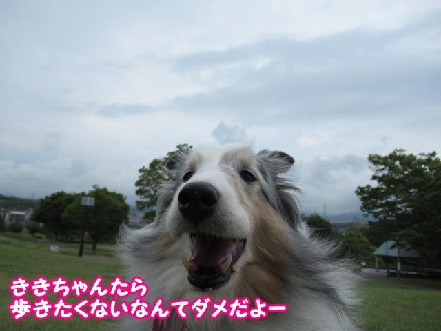 s_IMG_4189.jpg