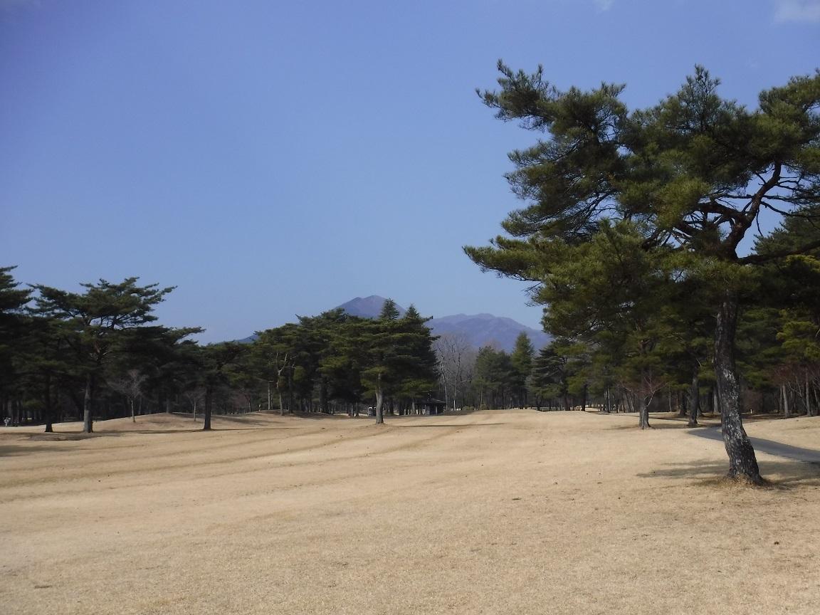 burogu 春の陽気のゴルフ.jpg