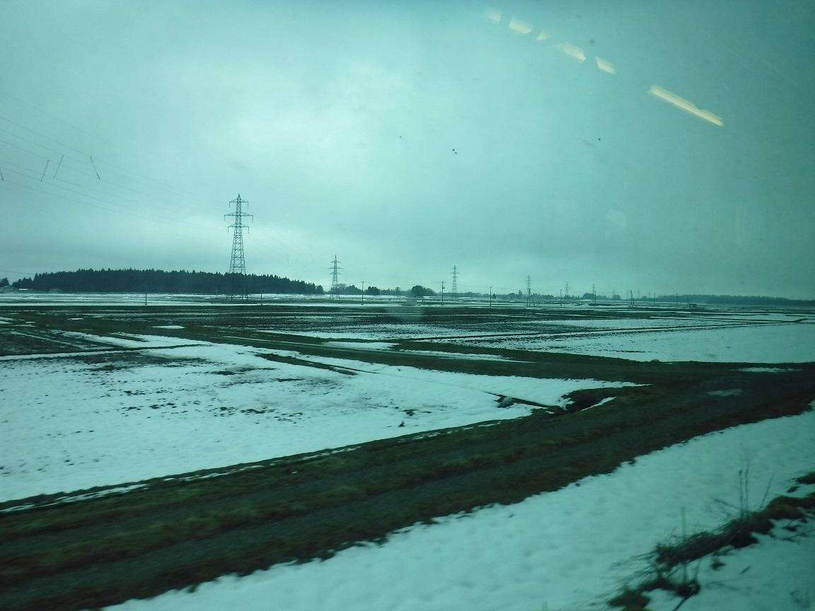 ブログ うわー、雪があるよ.jpg