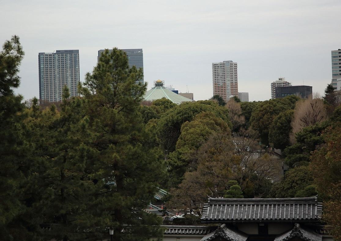 ブログ 天守あとからの武道館.jpg