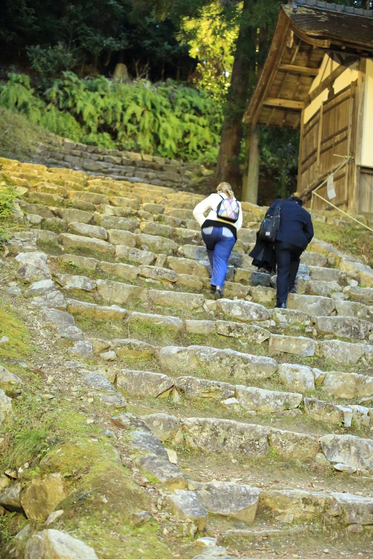 ブログ 奥の宮へ続く階段、ここが最後の階段.jpg