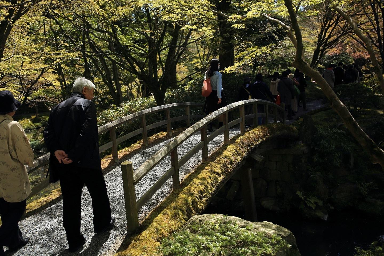 ブログ 木漏れ日の中、橋を渡る.jpg