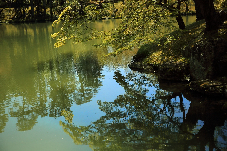 ブログ 萌黄が池に映る.jpg