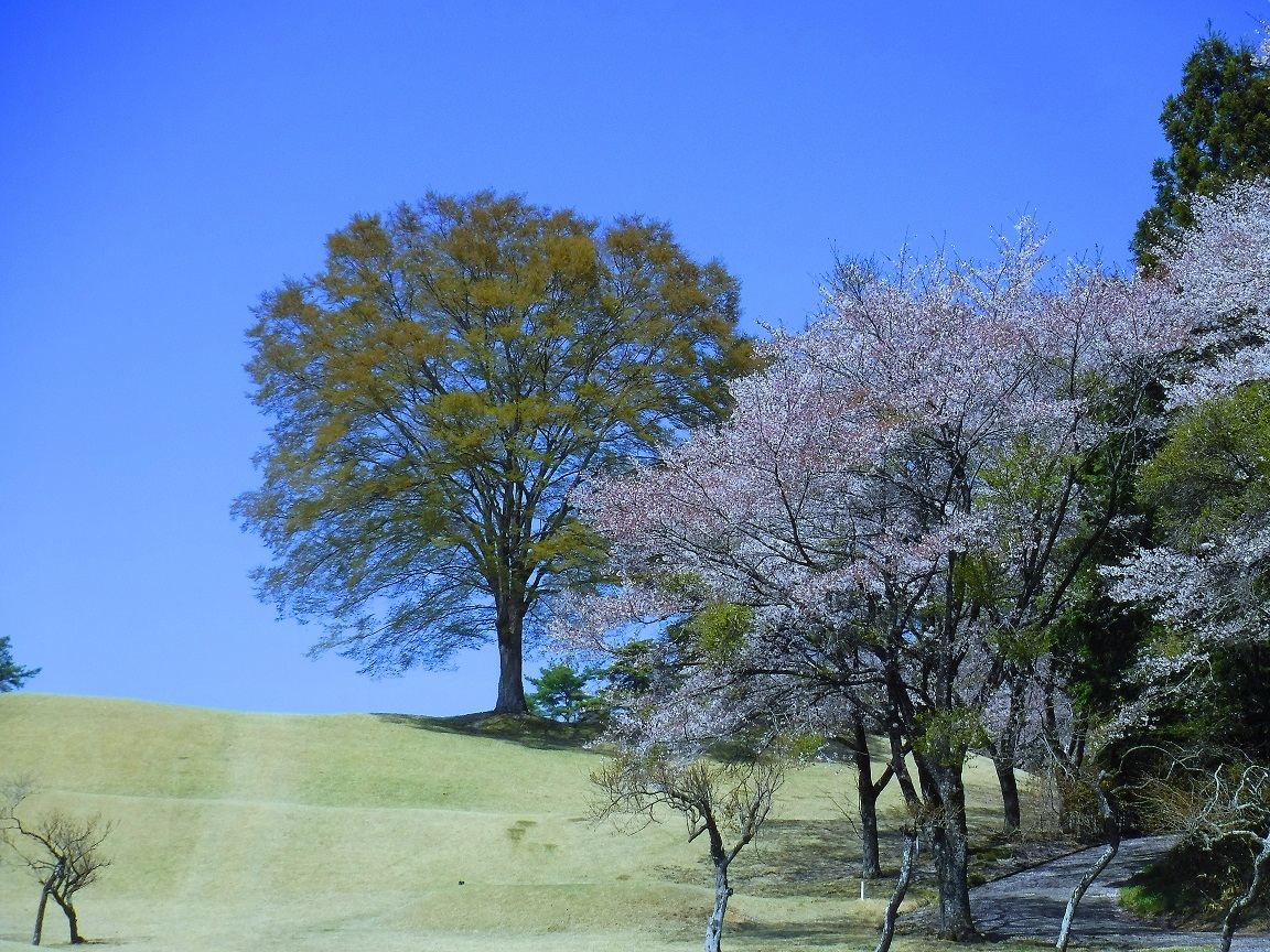 ブログ ゴルフ場の景色は申し分なし.jpg