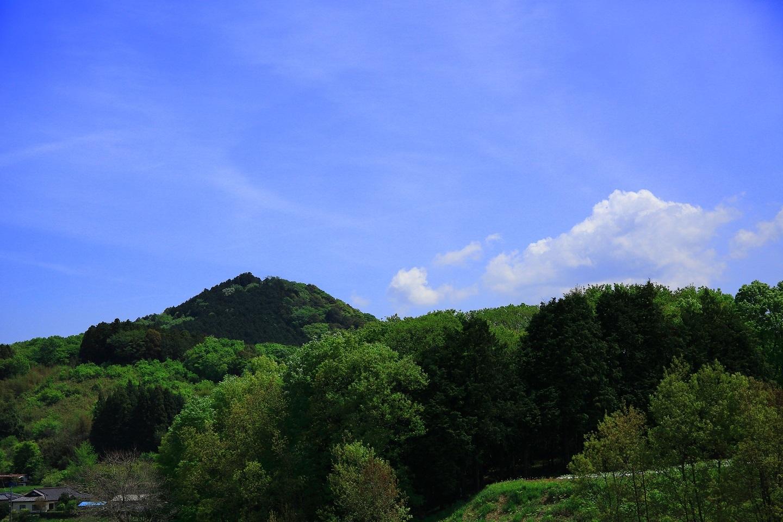 ブログ 野歩きの  背中に背負いたる  夏の雲.jpg