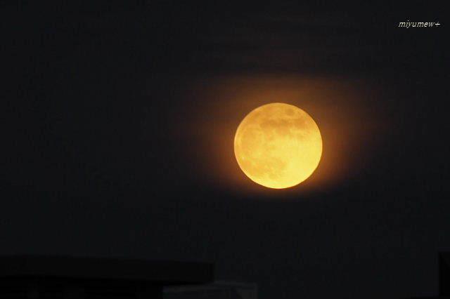 moon190617