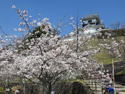 kakegawa07.jpg