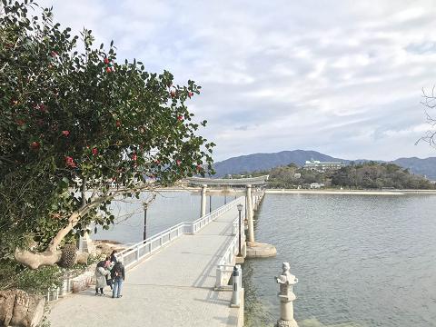 1515-竹島から蒲郡