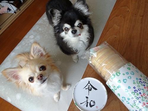 だっちゅさんからプレゼント♪ ナッツ&柚子