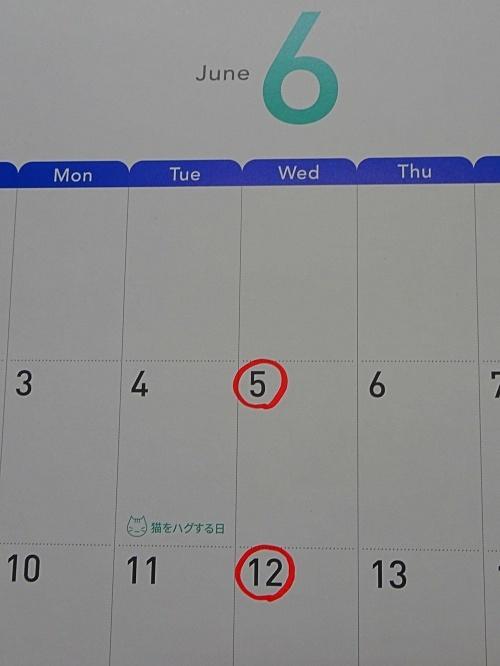 動物病院のカレンダー