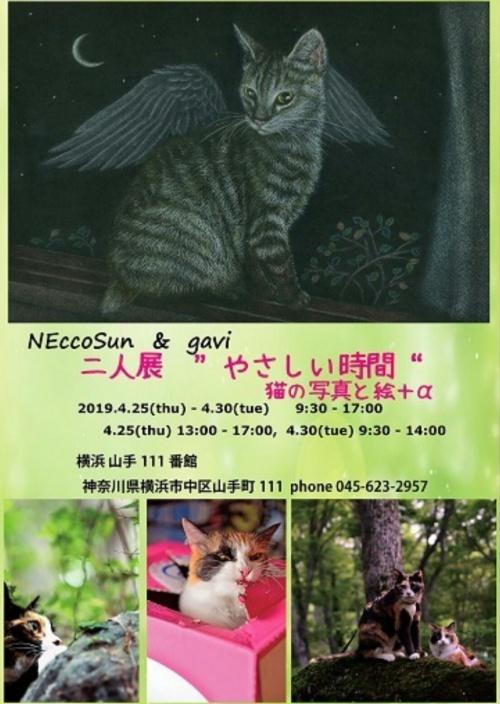 """NEccoSun&Gavi 二人展 """"やさしい時間"""" 猫写真と絵+α"""