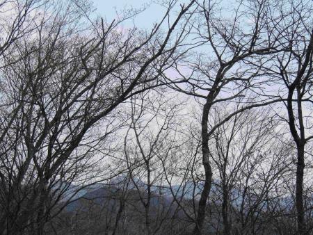 190407大平戸山 (9)御荷鉾山s