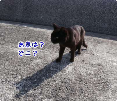 201906042121393f9.png