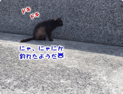 20190604212143aef.png
