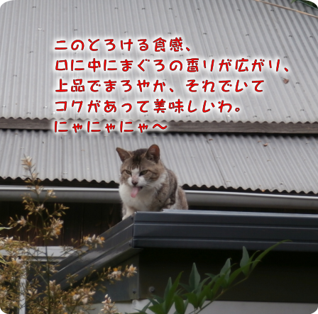 20190617162445533.png
