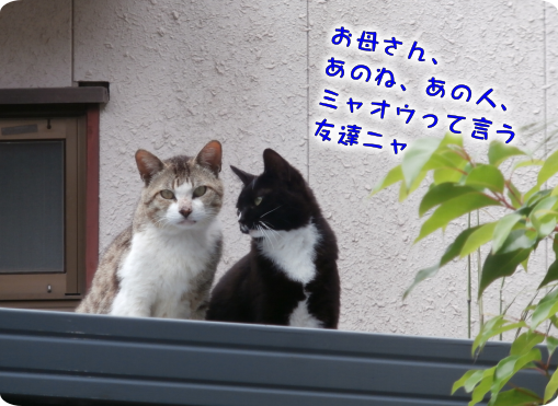 20190617163649f47.png