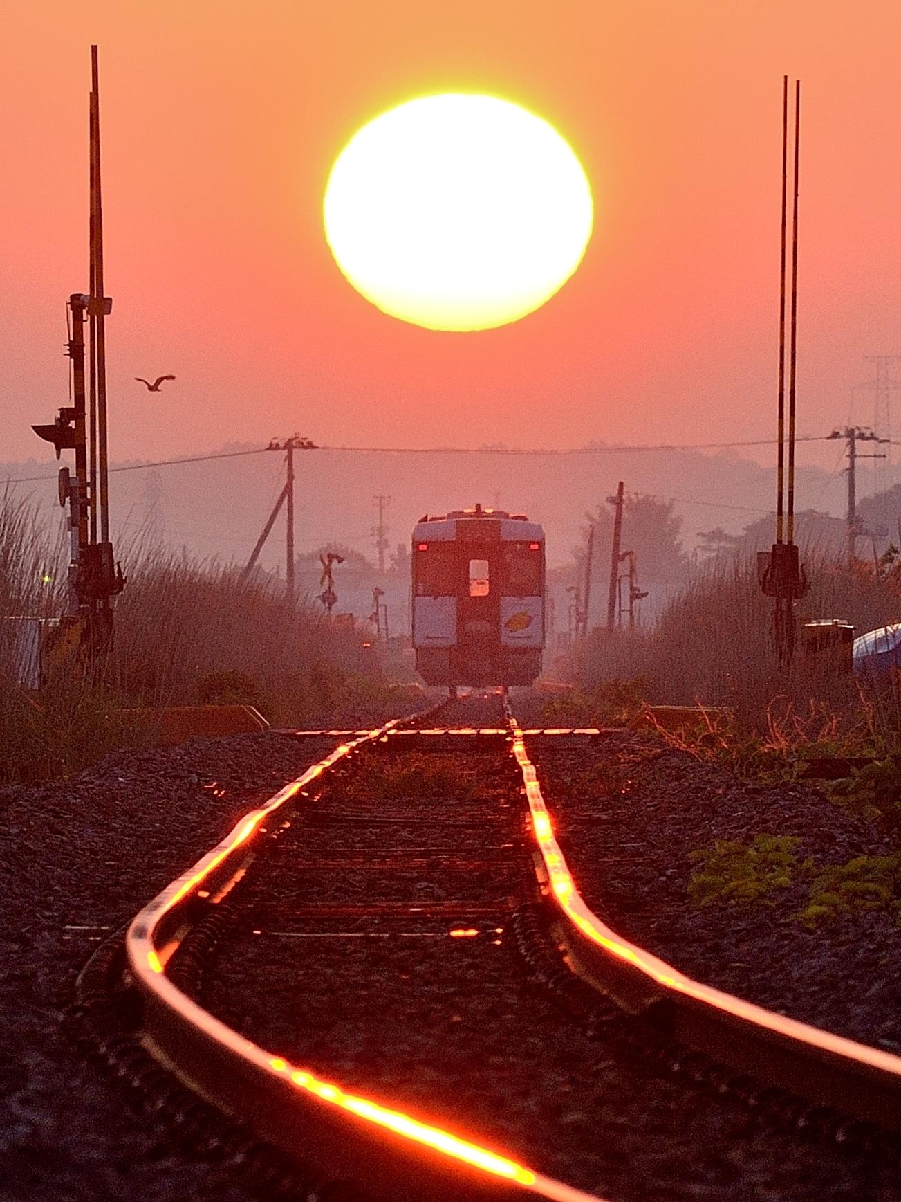 夕日電車 176-2-2