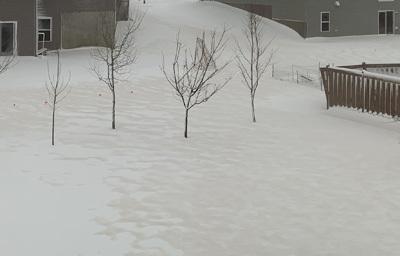 snow04111903.jpg
