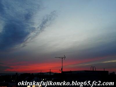 319夕雲