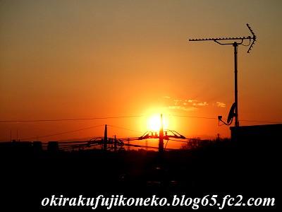 324夕陽