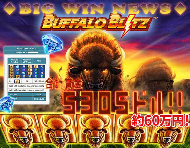 BUFFALO BLITZ™5305