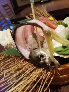 HamausagiAboshi_004_org.jpg