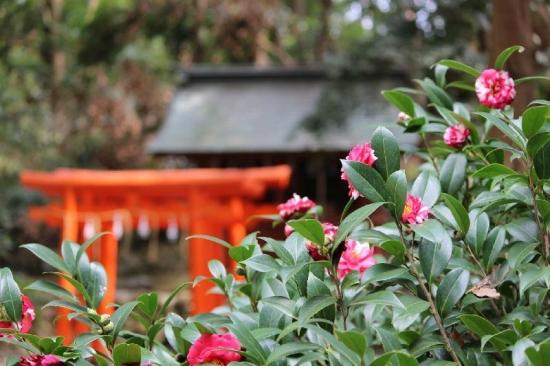 KunozanToshogu_013_org.jpg