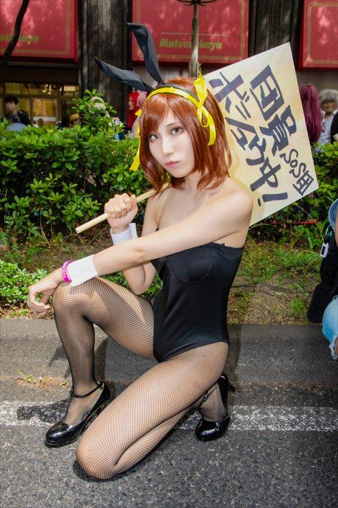 涼宮ハルヒ バニー ゆーじ コスプレ 8