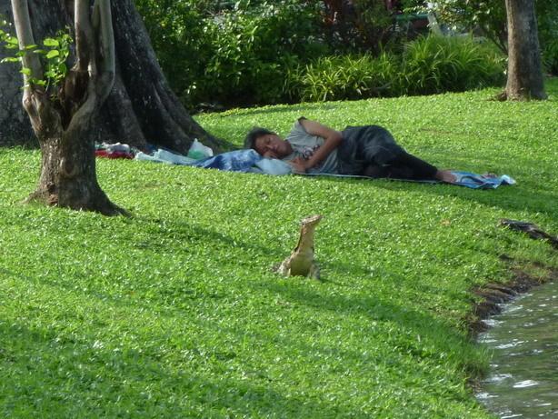 Lumphini Park 昼寝するおっちゃんと大トカゲ_サイズ変更