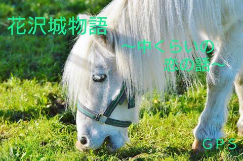 『花沢城物語~中くらいの恋の話~』 byGPS