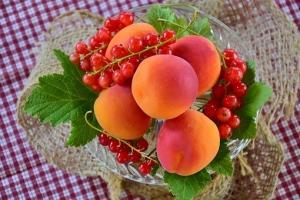 apricots-2444808__340.jpg