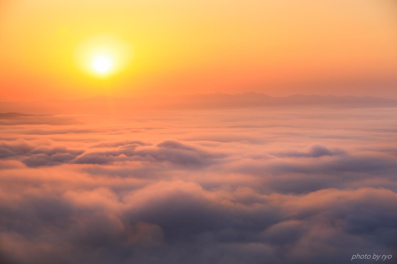 新緑の霧の海_3