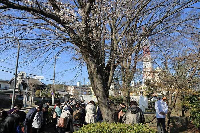 磐瀬の杜 滝祭・放魚祭1